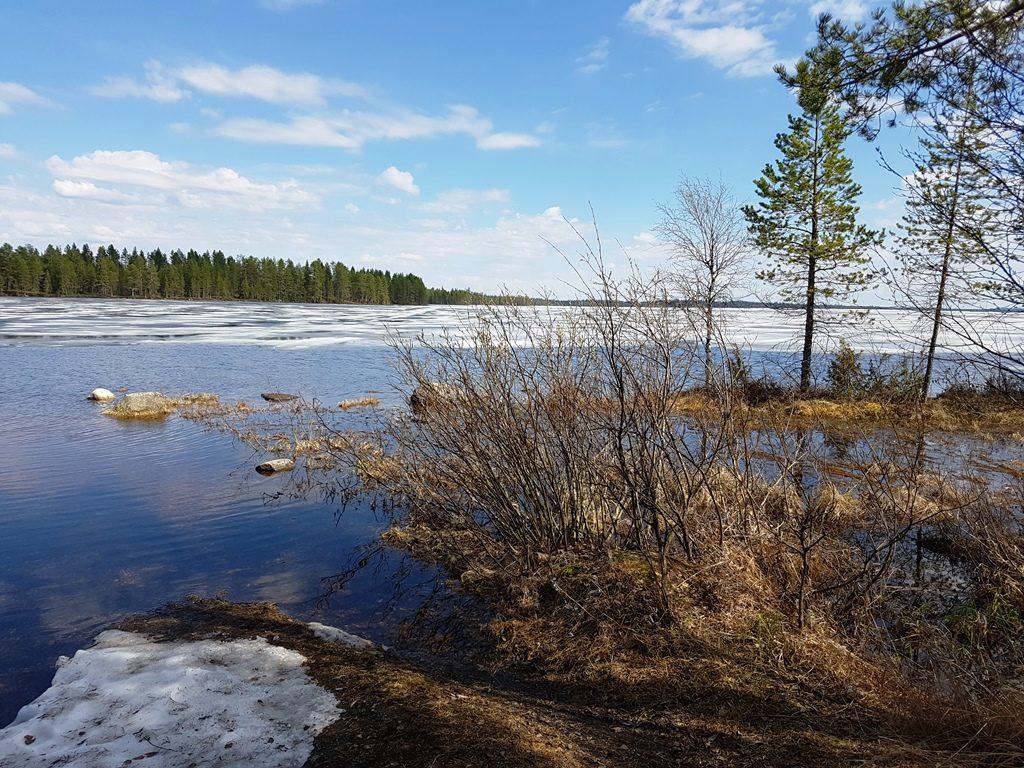 Finland in de lente